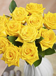 Yellow roses for friendship