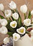 Christmas White Tulips - Free UK delivery