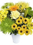 Lemon Zest arrangement - Free UK delivery