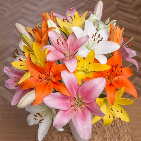 PRODUCT FLOWERS Luxury Lilies Large image