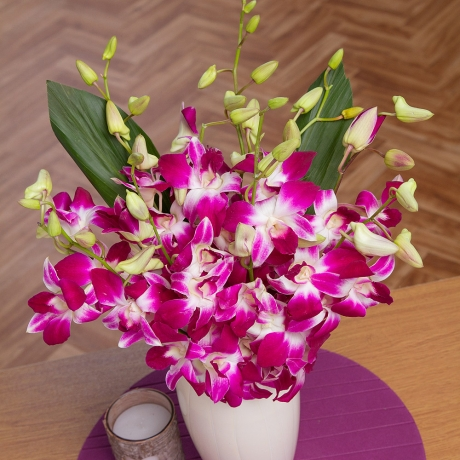 PRODUCT FLOWERS Oriental Orchids Large image