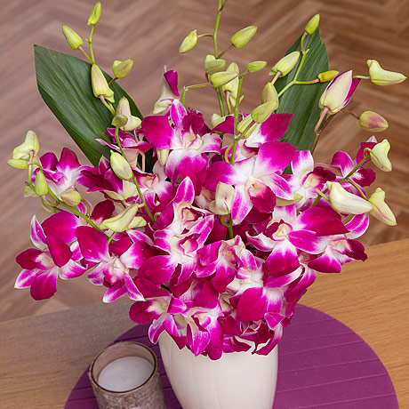 PRODUCT FLOWERS Oriental Orchids image