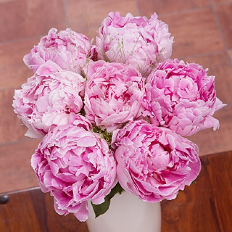 PRODUCT FLOWERS Pink Peonies Large image