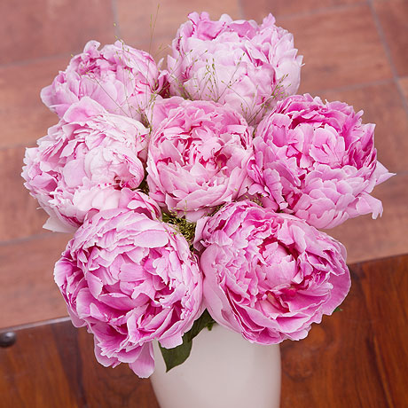 PRODUCT FLOWERS Pink Peonies image