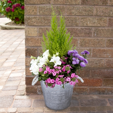 PRODUCT PLANTS Summer Garden Planter image