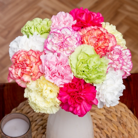 PRODUCT_FLOWERS_14_Classic_Carnations_image1_460x460.jpg