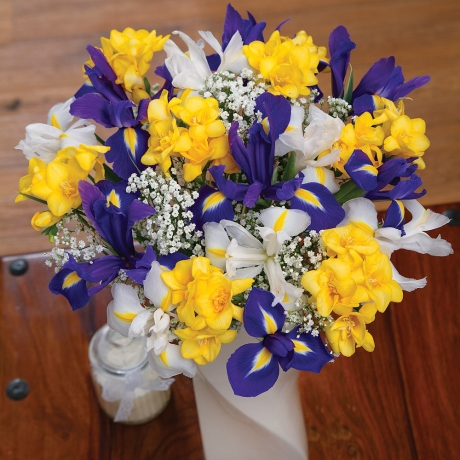 PRODUCT FLOWERS Iris and Freesias Large image