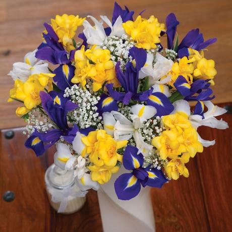 PRODUCT FLOWERS Iris and Freesias Large image