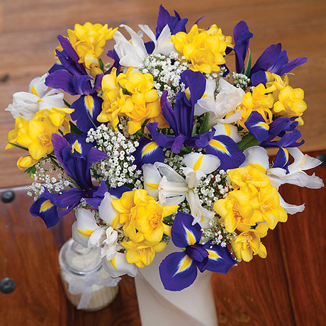 PRODUCT FLOWERS Iris and Freesias image
