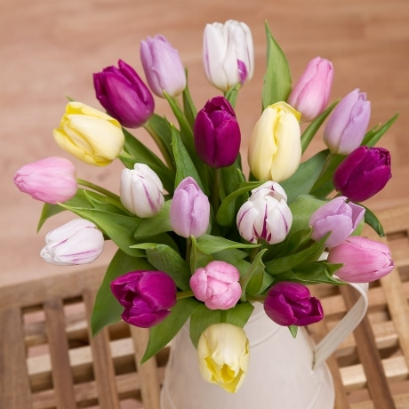 PRODUCT FLOWERS Spring Tulips Large image