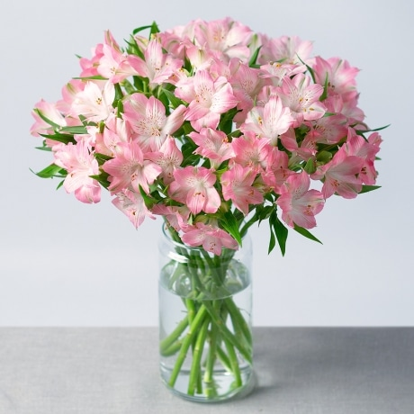 PRODUCT FLOWERS Simply Alstromeria Large image