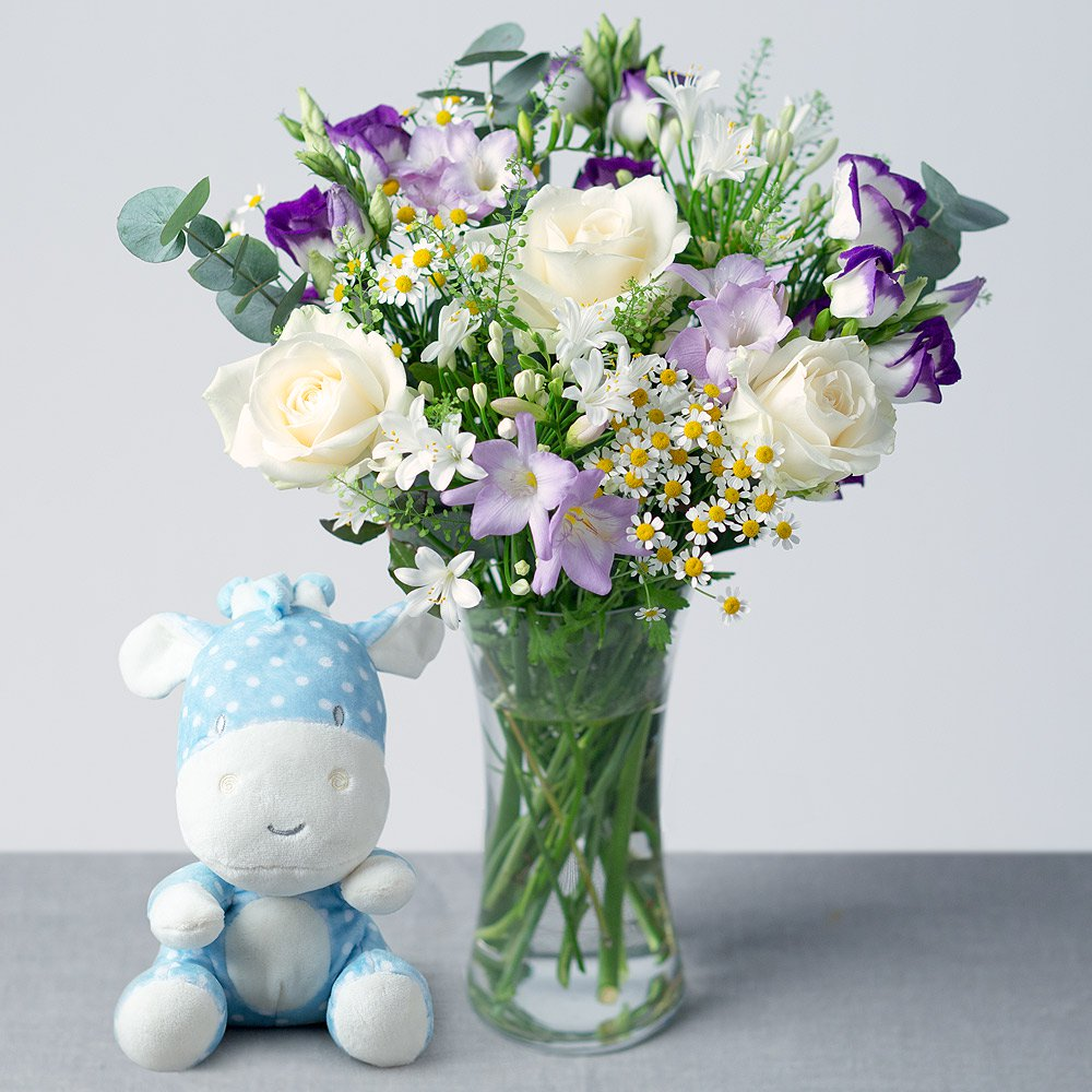 PRODUCT FLOWERS Baby Boy Gift image
