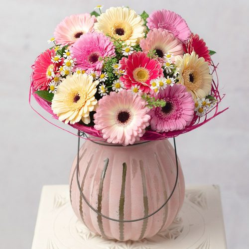 PRODUCT_FLOWERS_Daisy_Dream_image1_460x460.jpg
